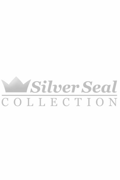 Silver Seal